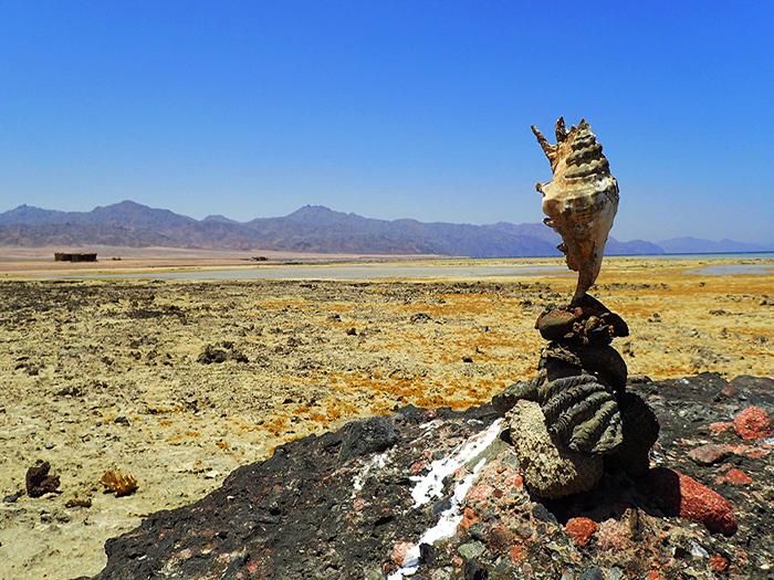 טיול מאורגן לסיני, טרקים לסיני, טיולים במדבר, חופי נאבק, נבק, חופי סיני, ספארי חופים, טיולים במדבר, טיולי ג'יפים סיני